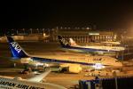 きったんさんが、中部国際空港で撮影した全日空 787-8 Dreamlinerの航空フォト(写真)