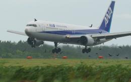 ひげじいさんが、庄内空港で撮影した全日空 767-381の航空フォト(写真)