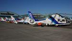 航空見聞録さんが、札幌飛行場で撮影したオールニッポンヘリコプター AS365N2 Dauphin 2の航空フォト(写真)