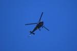 msrwさんが、群馬ヘリポートで撮影した陸上自衛隊 TH-480Bの航空フォト(写真)