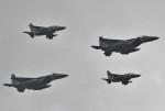 はれ747さんが、千歳基地で撮影した航空自衛隊 F-15DJ Eagleの航空フォト(写真)