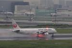Leporelloさんが、羽田空港で撮影した日本航空 767-346/ERの航空フォト(写真)