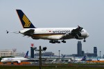 おかめさんが、成田国際空港で撮影したシンガポール航空 A380-841の航空フォト(写真)