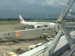 充雅さんが、鹿児島空港で撮影した日本航空 767-346/ERの航空フォト(写真)