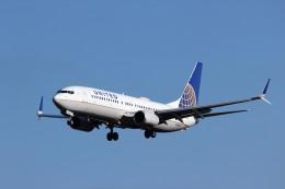 TRdenさんが、成田国際空港で撮影したユナイテッド航空 737-824の航空フォト(写真)