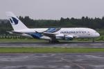 sky77さんが、成田国際空港で撮影したマレーシア航空 A380-841の航空フォト(写真)
