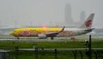 kamerajiijiさんが、成田国際空港で撮影した中国国際航空 737-89Lの航空フォト(写真)