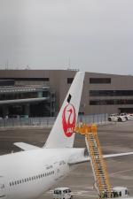 パピヨンさんが、成田国際空港で撮影した日本航空 777-246/ERの航空フォト(写真)