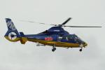 セブンさんが、札幌飛行場で撮影した北海道航空 AS365N3 Dauphin 2の航空フォト(写真)