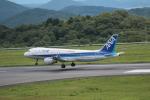tutomuさんが、岡山空港で撮影した全日空 A320-211の航空フォト(写真)