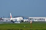 おかめさんが、成田国際空港で撮影した日本航空 777-346/ERの航空フォト(写真)