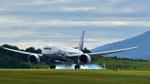 オキシドールさんが、広島空港で撮影した全日空 787-8 Dreamlinerの航空フォト(写真)