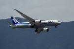 ビッグジョンソンさんが、福岡空港で撮影した全日空 787-8 Dreamlinerの航空フォト(写真)