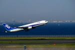 たぬきぽんぽんさんが、羽田空港で撮影した全日空 767-381の航空フォト(写真)