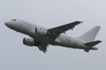 木人さんが、成田国際空港で撮影したケイマン諸島企業所有 A318-112 CJ Eliteの航空フォト(写真)