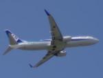 WLMさんが、仙台空港で撮影した全日空 737-881の航空フォト(写真)