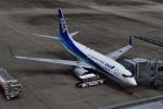 pepeA330さんが、仙台空港で撮影した全日空 737-781の航空フォト(写真)