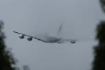ぎんじろーさんが、成田国際空港で撮影したマレーシア航空 A380-841の航空フォト(写真)