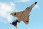 apphgさんが、岐阜基地で撮影した航空自衛隊 F-4EJ Phantom IIの航空フォト(写真)