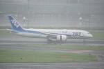 w_h1011さんが、羽田空港で撮影した全日空 787-8 Dreamlinerの航空フォト(写真)
