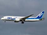 Mame @ TYOさんが、成田国際空港で撮影した全日空 787-8 Dreamlinerの航空フォト(写真)