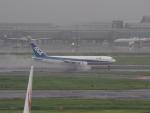 名無しの権兵衛さんが、羽田空港で撮影した全日空 767-381の航空フォト(写真)