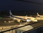 Tatsu mitsuさんが、宮崎空港で撮影した全日空 787-8 Dreamlinerの航空フォト(写真)