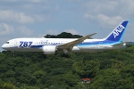 Wings Flapさんが、福岡空港で撮影した全日空 787-8 Dreamlinerの航空フォト(写真)