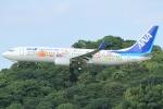 Wings Flapさんが、福岡空港で撮影した全日空 737-881の航空フォト(写真)