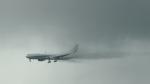 flytaka78さんが、成田国際空港で撮影した全日空 767-381/ERの航空フォト(写真)