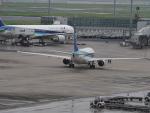 名無しの権兵衛さんが、羽田空港で撮影した全日空 737-881の航空フォト(写真)