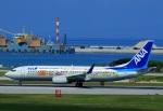 Espace77さんが、那覇空港で撮影した全日空 737-881の航空フォト(写真)
