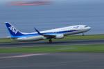 Nao0407さんが、羽田空港で撮影した全日空 737-881の航空フォト(写真)