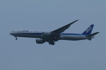 しかばねさんが、成田国際空港で撮影した全日空 777-381/ERの航空フォト(写真)