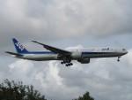 ayakahanさんが、成田国際空港で撮影した全日空 777-381/ERの航空フォト(写真)
