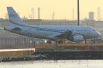 MA~RUさんが、羽田空港で撮影したグローバル・ジェット・ルクセンブルク A319-115CJの航空フォト(写真)