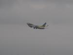 名無しの権兵衛さんが、羽田空港で撮影したAIR DO 737-781の航空フォト(写真)