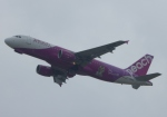 ふうちゃんさんが、関西国際空港で撮影したピーチ A320-214の航空フォト(写真)