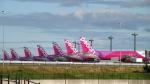 ねぎぬきさんが、関西国際空港で撮影したピーチ A320-214の航空フォト(写真)
