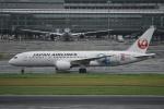 にししょさんが、羽田空港で撮影した日本航空 787-8 Dreamlinerの航空フォト(写真)