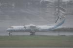 にししょさんが、羽田空港で撮影した海上保安庁 DHC-8-315Q MPAの航空フォト(写真)