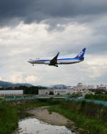 Astechnoさんが、伊丹空港で撮影した全日空 737-881の航空フォト(写真)