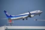 nobu2000さんが、那覇空港で撮影した全日空 737-881の航空フォト(写真)