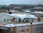 まいけるさんが、フランクフルト国際空港で撮影したルフトハンザドイツ航空 A320-271Nの航空フォト(写真)