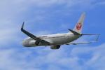 Lucky Manさんが、岡山空港で撮影した日本航空 737-846の航空フォト(写真)
