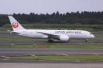 けいとパパさんが、成田国際空港で撮影した日本航空 787-8 Dreamlinerの航空フォト(写真)