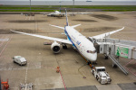 ken_kenさんが、羽田空港で撮影した全日空 787-8 Dreamlinerの航空フォト(写真)