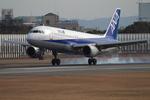 JA946さんが、伊丹空港で撮影した全日空 A320-211の航空フォト(写真)