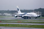 どりーむらいなーさんが、成田国際空港で撮影したマレーシア航空 A380-841の航空フォト(写真)