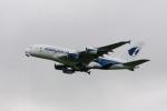 X8618さんが、成田国際空港で撮影したマレーシア航空 A380-841の航空フォト(写真)